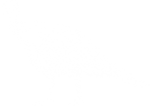 Christmas Parties illustration bird 3