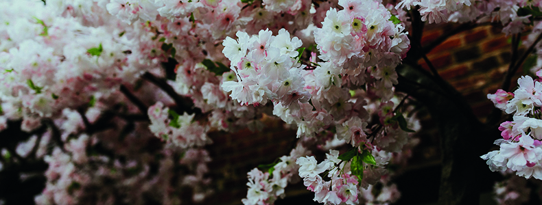 Pink spring flowers at a last minute wedding at Woodhall Manor